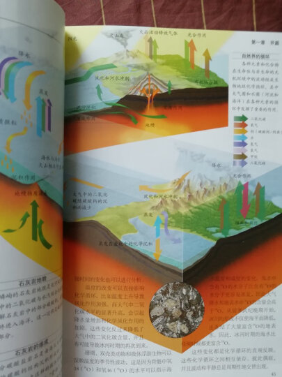 地球生命的历程 晒单图