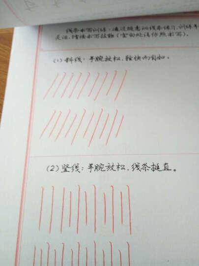 庞中华硬笔:行书基础训练(套装全3册) 晒单图