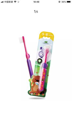 英国小树苗 儿童婴儿训练牙刷(粉色) 软毛不伤牙龈 适合1-3岁宝宝 晒单图