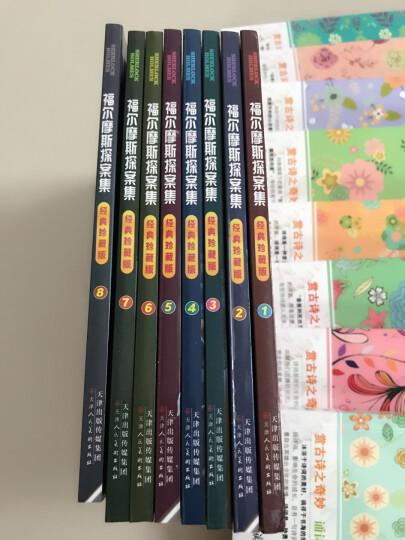 福尔摩斯探案集全集8册少儿版青少版科学大侦探推理小说儿童书籍11-14岁小学生课外读物 晒单图