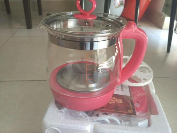 竹水溪 养生壶玻璃加厚电热水壶煮茶壶器水果茶花茶多功能养生杯电水壶 玫瑰红色 晒单图