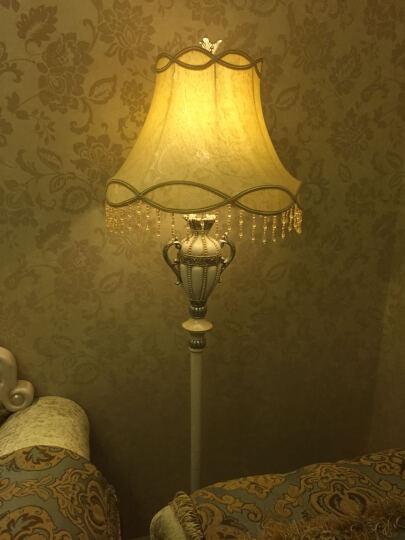 wanlang落地灯 欧式简约灯具 客厅卧室灯书房灯田园灯饰具 5601L 晒单图