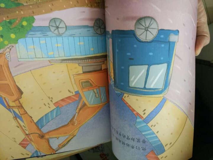 小小科学家百科绘本·自然书(套装全5册) 晒单图
