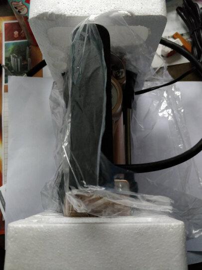 沿途 车载充气泵 汽车打气泵  金属双30缸 预设胎压数显 汽车轮胎用汽车用品 便携式打气筒 E21金色 晒单图
