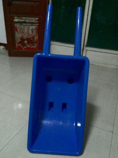 迪泰妮(Ditaini) 感统独轮小推车玩具幼儿园独轮车手推车儿童翻斗车塑料平衡车 蓝色 晒单图