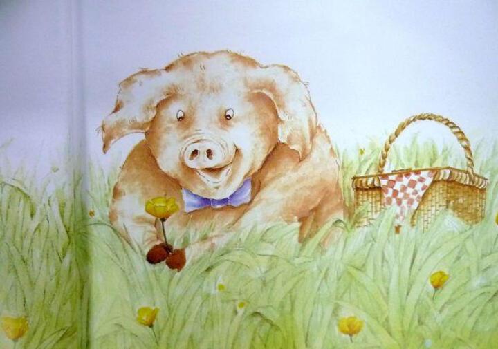 猪先生去野餐 晒单图