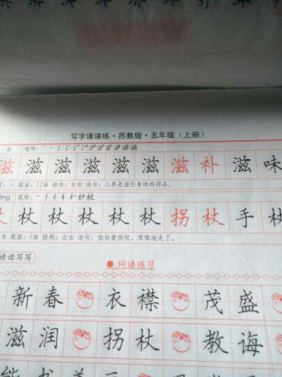 司马彦字帖:写字课课练·5年级(上册)(苏教版)(描摹) 晒单图