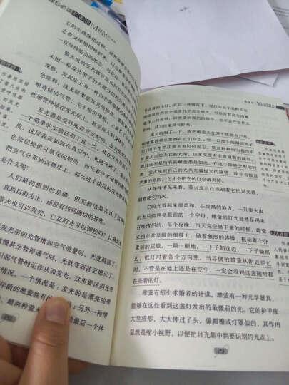 扫码阅读 幼儿英语分级阅读 入门级12册 英文绘本书 0-3-6岁口语 宝宝英语有声启蒙早教书 晒单图
