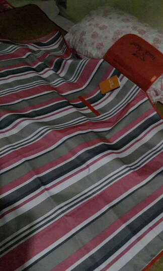 自游人 Trackman 野餐垫防潮垫 户外野炊营沙滩帐篷地垫 防水加厚草坪垫子野餐布 鲜橘色 晒单图