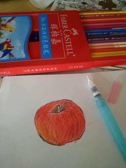 日本进口KURETAKE吴竹水彩笔 自来水笔水彩颜彩画笔 储水毛笔 自来水笔mini中单只装 晒单图