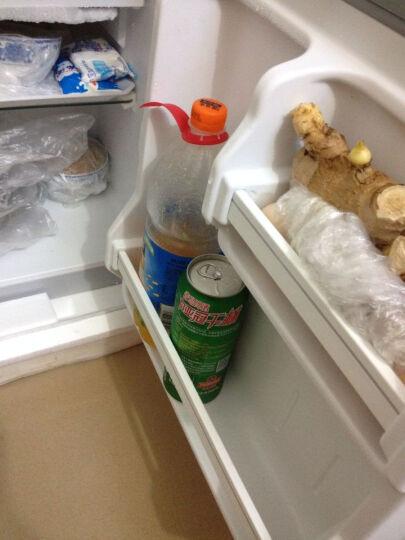 食品 具志 冷凍