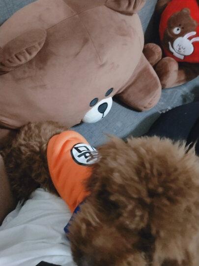猫咪狗狗的衣服春秋冬装泰迪贵宾犬博美比熊衣服小幼犬宠物卫衣两腿衣加绒保暖 小花朵 XXL 适合13~16斤的猫狗 晒单图