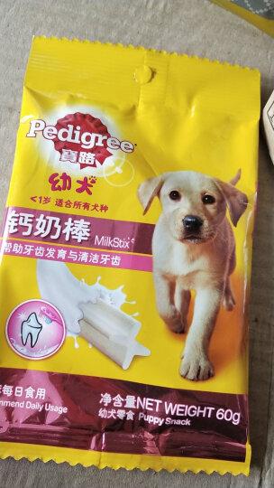 宝路 宠物零食狗零食 幼犬钙奶棒洁齿棒磨牙棒狗咬胶60g单包装(新老包装交替发货) 晒单图