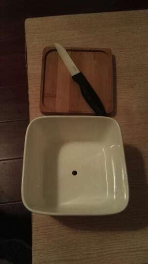 标优美(BIOM) 标优美(BIOM)多肉花盆 园艺工具白色陶瓷花盆长方形花盆陶瓷 花盆托盘圆形 6.5*5圆盘B102 晒单图