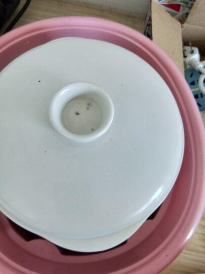 小熊(Bear)电炖锅 电炖盅 煲汤锅 隔水炖 煮粥锅 2.5L白瓷3胆 DDZ-106 晒单图