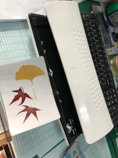 盆景(bonsaii) L405-B 塑封机 A4简洁时尚 静音型封装机 自动过塑机过胶机 晒单图