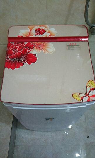 小鸭 7公斤 单缸脱水机 单筒甩干机 迷你甩干桶干衣机 晒单图
