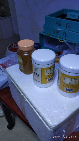 买两瓶赠蜂蜜 新鲜活性蜂王浆500g 顺丰直达坏单包赔新鲜油菜花蜂皇浆原浆鲜王浆 晒单图