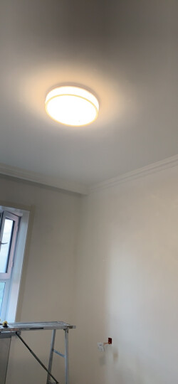 金幻 led吸顶灯卧室灯圆形客厅灯具灯饰温馨个性创意现代简约 【泡泡】单色白光22瓦 直径40cm 晒单图
