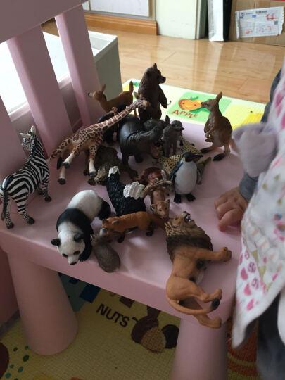 德国思乐Schleich仿真动物迷你模型玩具野生动物系列猩猩猴子等动物玩具孩子礼物成年礼物 黑猩猩哥哥S14680 晒单图