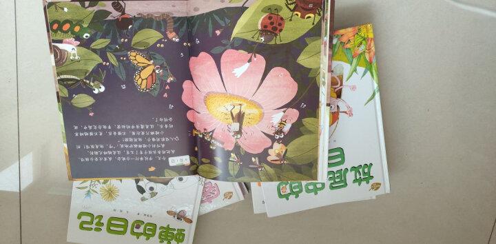 我的日记系列—瓢虫的日记蝉蜻蜓蜜蜂放屁虫蚂蚁蟋蟀蜗牛的日记等全8册精装儿童绘本故事书 晒单图