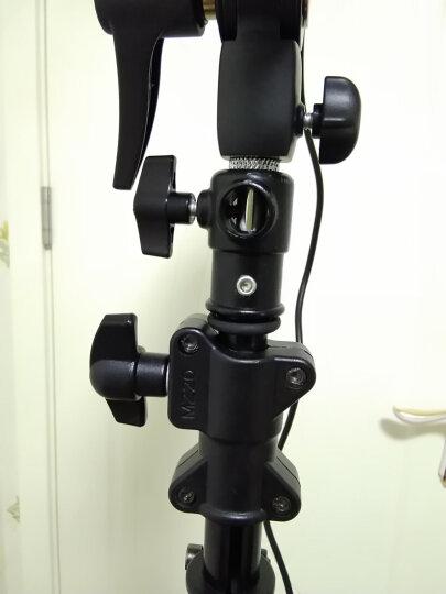 金贝(JINBEI)M-3旋转式横臂灯架灯架顶灯架两用摄影顶灯用横杆灯架 晒单图