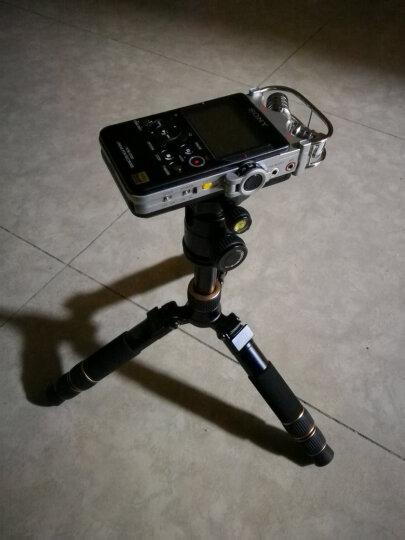 轻装时代迷你三脚架轻便携短小相机桌面微距三角架佳能微单反摄影手机直播自拍杆支架 Q166A+自拍杆套装 晒单图