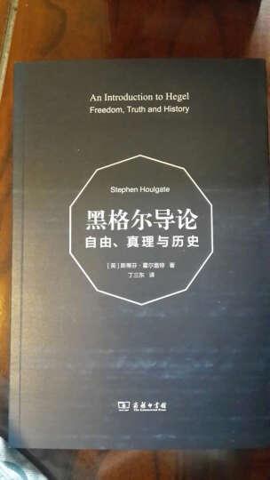 黑格尔导论:自由、真理与历史 晒单图
