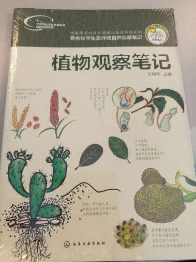 植物观察笔记-我的大自然观察笔记 晒单图
