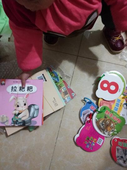 启蒙卡片 8册0-3岁婴幼儿图书宝宝撕不烂早教书籍儿童看图识字认字拼音卡片有图视觉认知卡 晒单图