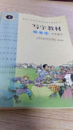 人教版5五年级语文下册字帖写字教材(钢笔字)小学5五年级下册语文书同步字帖 晒单图