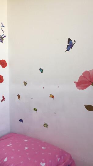 华居尚品 花卉贴纸墙贴画卧室客厅电视背景墙房间墙上装饰品墙壁画贴纸墙纸自粘防水墙面创意贴花 A.浪漫红玫瑰 晒单图