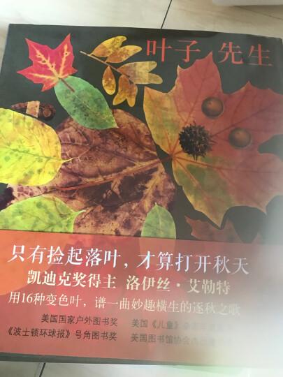 叶子先生 爱心树绘本童书 晒单图