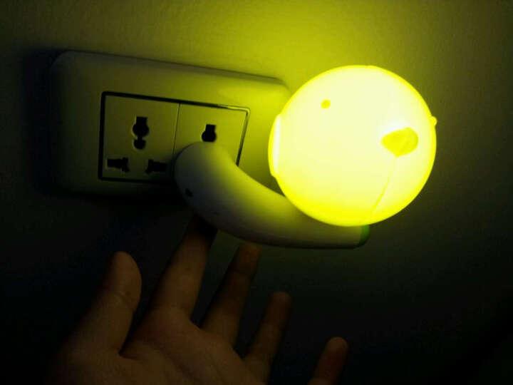 欣兰雅舍 创意led小夜灯声控感应灯触摸儿童喂奶灯氛围卧室床头灯睡眠 声控-爱心鸟 晒单图