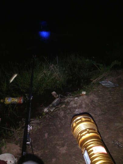 侣字钓鱼灯夜钓灯双光源蓝光变焦亮度超100w垂钓紫光灯钓鱼装备手电筒 F10钓椅支架套餐 晒单图