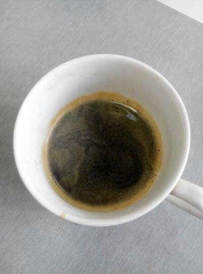 德龙(Delonghi)咖啡机 半自动咖啡机 意式浓缩 家用 泵压式 不锈钢锅炉 手动打奶泡 EC330S 晒单图