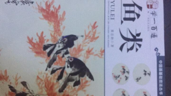 学一百通·中国画基础技法丛书·写意花鸟:鱼类 晒单图