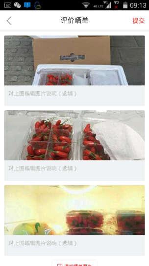 【银川馆】宁夏中宁鲜果枸杞 500g 2019鲜枸杞水果 晒单图