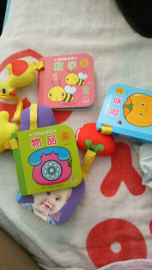 阳光宝贝 0-3岁益智早教玩玩乐玩具书 职业 晒单图
