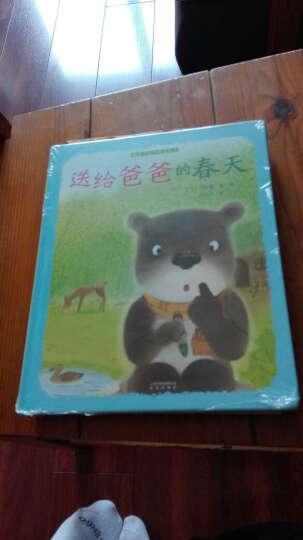 送给爸爸的春天+科学与自然 贝贝熊系列丛书 全2册 朝阳区小学一年级暑假 晒单图