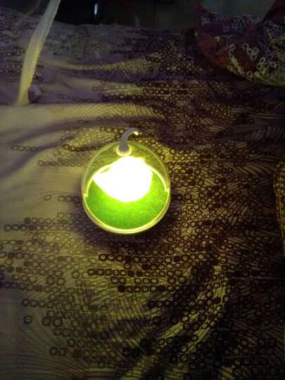 欣兰雅舍 创意led小夜灯声控感应灯触摸儿童喂奶灯氛围卧室床头灯睡眠 声控-呆黄鸟 晒单图