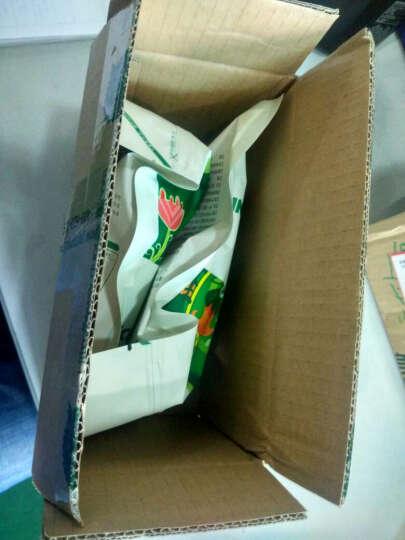 果真了得 大无花果干258g×1袋 新疆特产大果 休闲零食无花果干美味 优质烘焙果干 晒单图