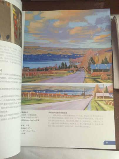 世界绘画经典教程:画出具有迷人光线的油画风景 晒单图
