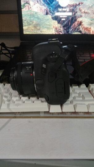 佳能(Canon)EOS 6D2/6D Mark II 专业全画幅数码单反相机 配佳能50mm f/1.8 STM定焦 晒单图
