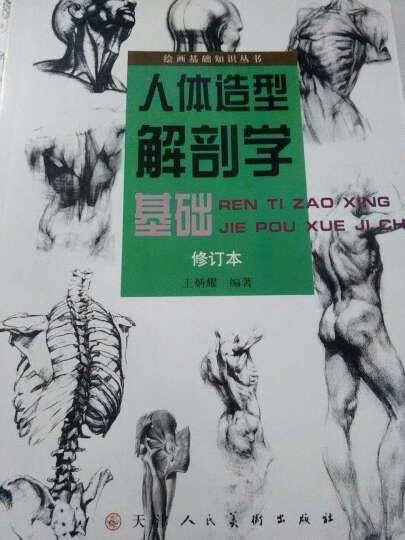 绘画基础知识丛书:人体造型解剖学基础(修订本) 晒单图
