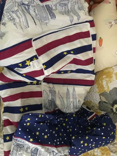 瑞莱思抱枕被子两用 多功能汽车沙发靠垫空调夏凉被儿童幼儿园被午睡枕头车载腰靠 巴黎街景 40cm*40cm展开(100*140cm) 晒单图
