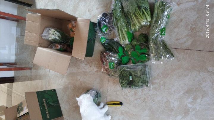 有机汇 有机苦瓜 新鲜蔬菜 榨汁凉拌 供港有机蔬菜 500g 晒单图