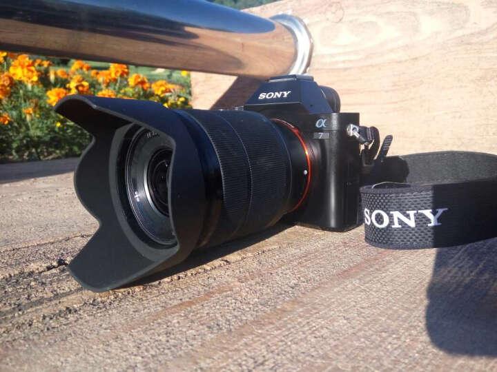 索尼(SONY)FE 28-70mm F3.5-5.6 OSS 全画幅标准变焦微单相机镜头 E卡口 (SEL2870) 晒单图