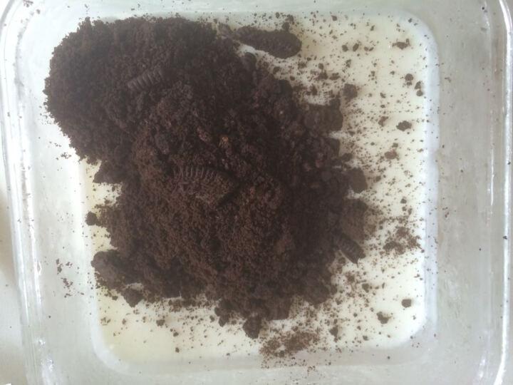 【包邮 巧厨烘焙】展艺硬冰淇淋粉雪糕粉自制甜筒巧克力软冰激凌原料 抹茶味 晒单图