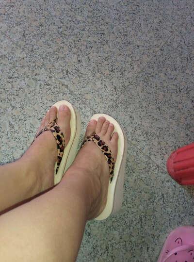 路拉迪 高跟人字拖女凉拖鞋防滑坡跟厚底夹拖沙滩鞋 平面水线米色豹纹 36 晒单图